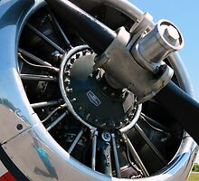 Airplane Propeller- Close Up by ctheworld