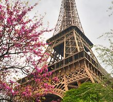 I Love Paris In The Springtime by Michael Matthews