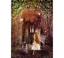 Faerie Road, A Fairytale Photographic Print