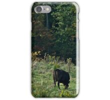 Cows 5 iPhone Case/Skin