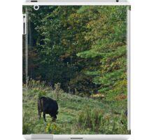 Cows 5 iPad Case/Skin
