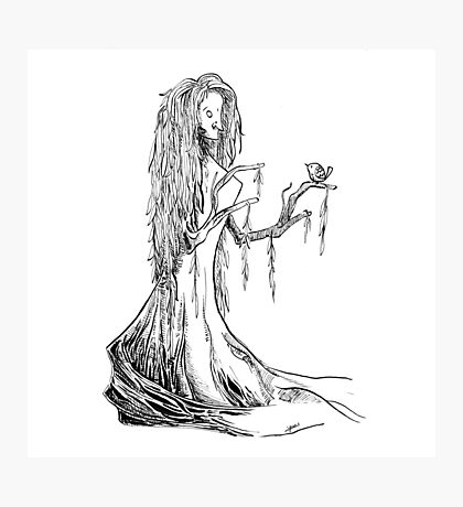 Lady Willow Photographic Print