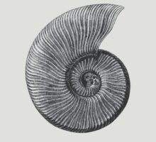 Ammonite Fossil T-Shirt
