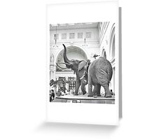 Stanley Field Hall: Chicago's Famous Elephants Greeting Card