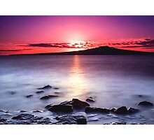 Magenta Gazes On Silver Mist Photographic Print