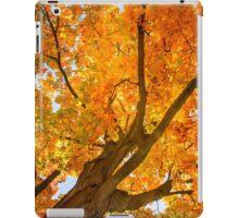 Golden Maple iPad Case/Skin
