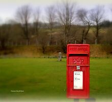 Country Mailbox by Charmiene Maxwell-Batten