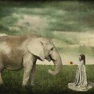 Acceptance... by Karen  Helgesen