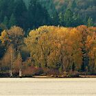 Columbia River Autumn - Columbia County, OR by Rebel Kreklow