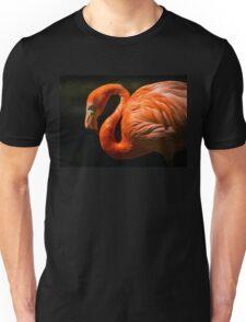 Pink Red Flamingo Bird Nature Animal Birds Unisex T-Shirt