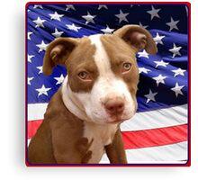 American pitbull Terrier puppy Canvas Print