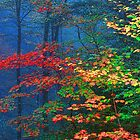MISTY AUTUMN FOREST by Chuck Wickham