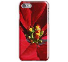 Poinsettia iPhone Case/Skin
