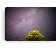 Milky Way in a remote place Canvas Print