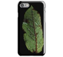 Watery Green Leaf iPhone Case/Skin