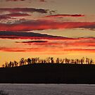 Dunalley Sunset - Dunalley, Tasmania, Australia by PC1134
