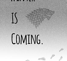 Winter Is Coming by Chris Abraham