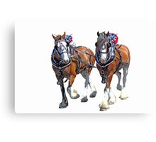 Working Clydesdales Canvas Print
