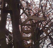 Chair Tree by idnarainbow