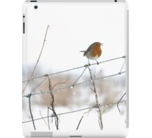 Robin singing on wire fence iPad Case/Skin