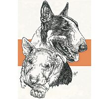 Bull Terrier Father & Son Photographic Print