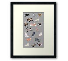 Many Meows Framed Print