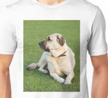 AS laying Unisex T-Shirt