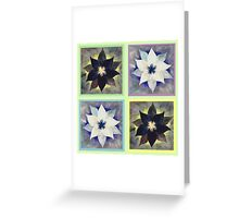 Black and White Flower Quilt on Light Green Greeting Card