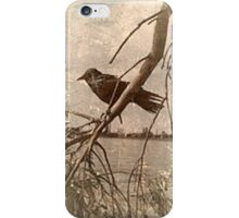 west iPhone Case/Skin