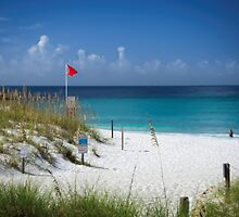 A Pretty Beach on The Gulf Of Mexico !!! by LarryB007