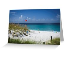 A Pretty Beach on The Gulf Of Mexico !!! Greeting Card