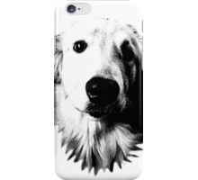 Who Me? Funny Dog Expressions. Golden Retriever Images. iPhone Case/Skin