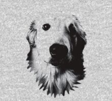 Who Me? Funny Dog Expressions. Golden Retriever Images. Kids Clothes