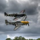 Frankie and Spitfire by Nigel Bangert