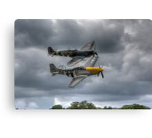 Frankie and Spitfire Canvas Print