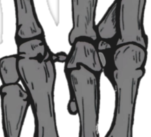 Skeleton hand   Black Sticker