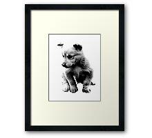 Sad Face Puppy Dog Digital Engraving Framed Print
