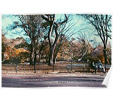 Central Park Bench - Tinted Poster