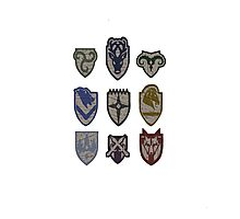 Skyrim Hold Logos Photographic Print