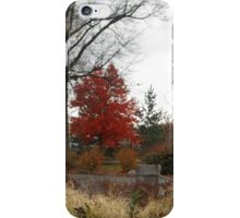 Cleveland Metroparks Zoo  iPhone Case/Skin