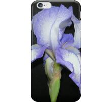 Purple and White Iris in Profile iPhone Case/Skin