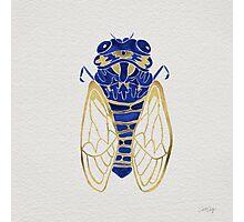 Cicada – Navy & Gold Photographic Print