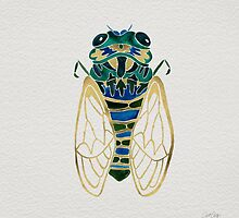 Cicada by Cat Coquillette