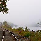Railroad bridge 2 by Carolyn Clark