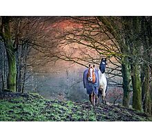 Welsh Horses Photographic Print