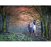 Welsh Horses Photographic Print