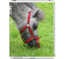 Little Donkey iPad Case/Skin