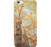 Autumn Inkblot iPhone Case/Skin