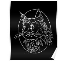 Maine Coon Cat  White  Poster