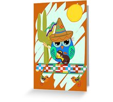 Cute Sombrero Owl with a Guitar Greeting Card